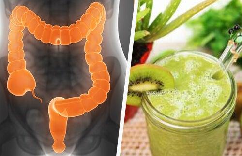 3 frullati curativi per il colon irritabile