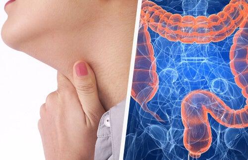Mal di gola e intestino: c'è una relazione?