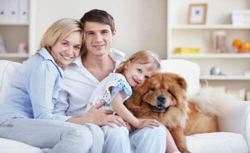 momenti in famiglia