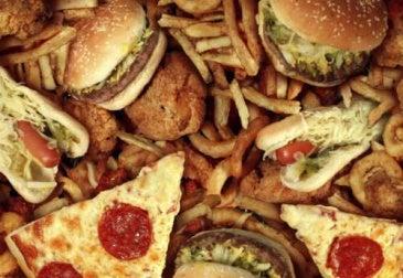 il cibo spazzatura è ricco di sostanze tossiche