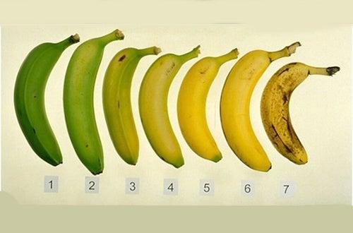 È più sano mangiare le banane acerbe o mature?