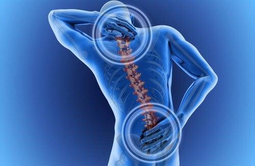 A cosa è dovuto il mal di schiena?