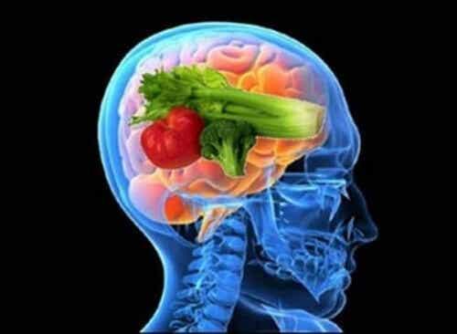 """Scoprite i benefici della """"dieta del cervello"""""""