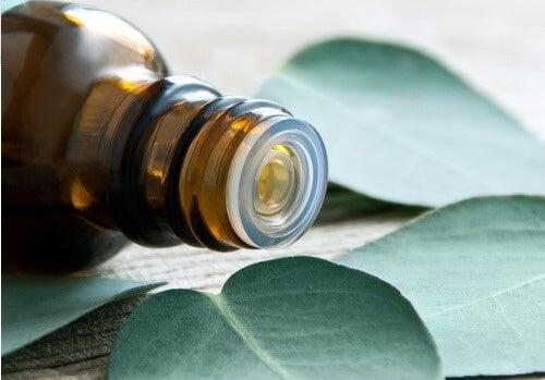 l'eucalipto possiede proprietà in grado di calmare i dolori dell'artrite