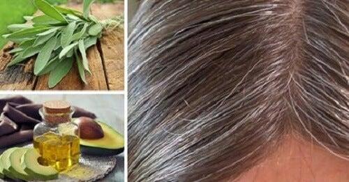 Cause e rimedi naturali per i capelli bianchi - Vivere più sani 23bb2eea3df3