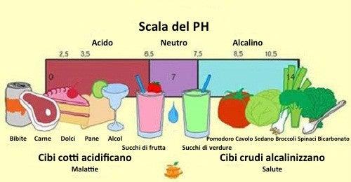 Tabella dei cibi che alcalinizzano e acidificano il corpo