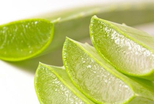 L'Aloe vera aiuta a rivitalizzare i capelli