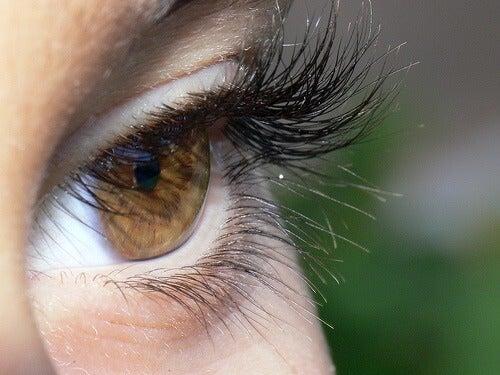 Ciglia folte per occhi più grandi