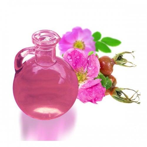 olio essenziale di rosa rubiginosa