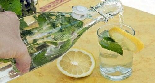 Combattere il colesterolo alto: 5 bevande naturali