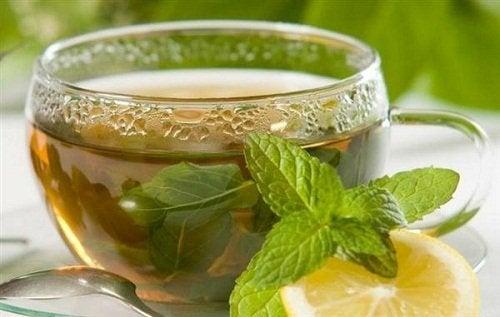 Infuso tè verde