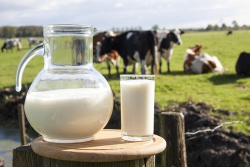 Effetti del latte