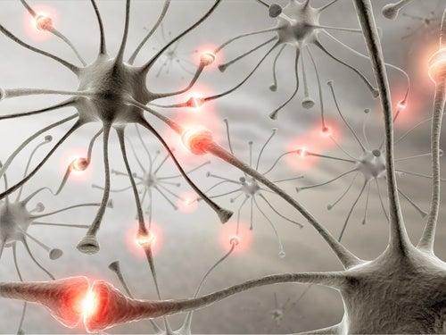 Curiosità sul sonno - Salute dei neuroni