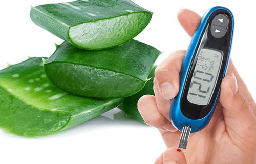 L'aloe vera: un'alleata per il trattamento del diabete