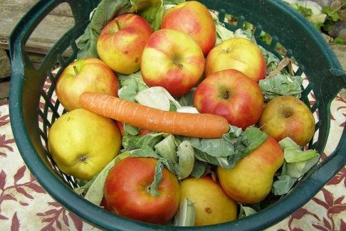 mele carote e cavolo per acidità di stomaco