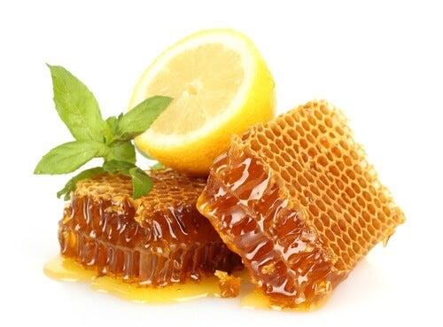 limone-e-miele-500x369