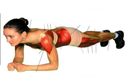 Fare il plank: l'esercizio addominale per tutto il corpo