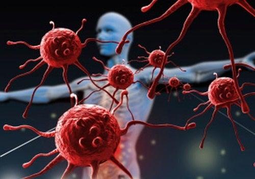 Cosa distrugge e debilita il sistema immunitario?