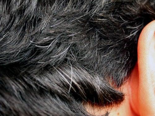 6 rimedi fatti in casa per prevenire la comparsa precoce dei capelli bianchi 379235790e93