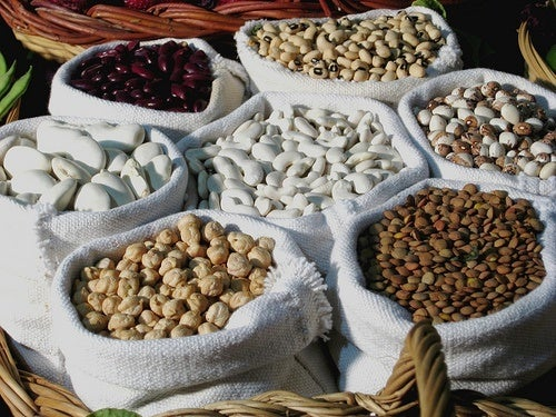 Proteina vegetale