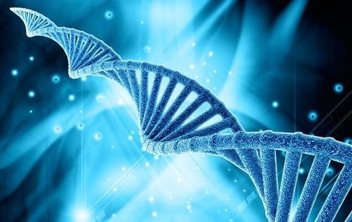 genetica e DNA