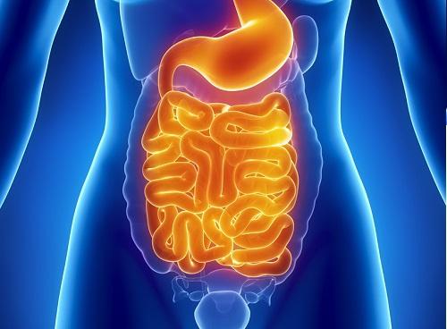 detox un mese pulizia intestino sale