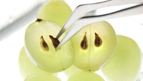 benefici dei semi di uva