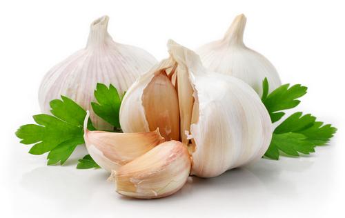 L'aglio è fra i migliori antibiotici naturali
