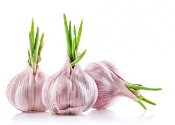 Aglio e cipolla sono ricchi di proprietà nutrienti per la salute