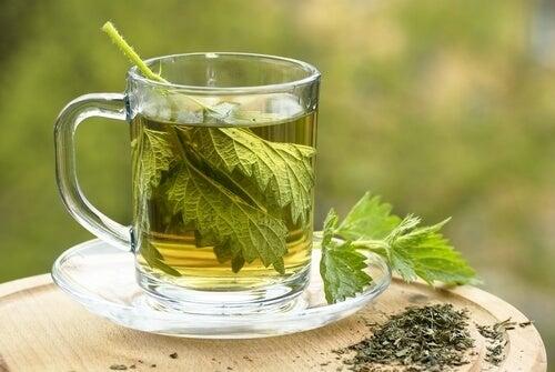 tè di ortica