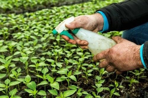 i pesticidi e la tiroide