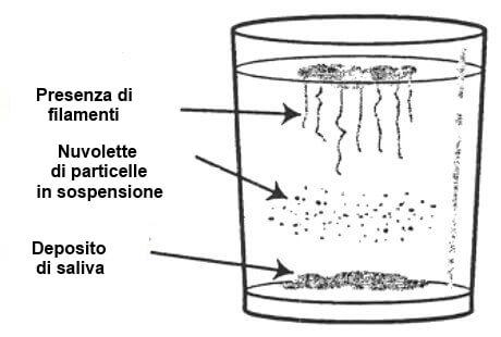 bicarbonato per candida