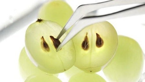 i semi dell'uva sono ricchi di benefici
