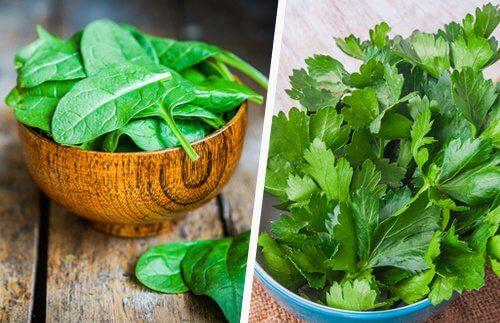 spinaci e sedano