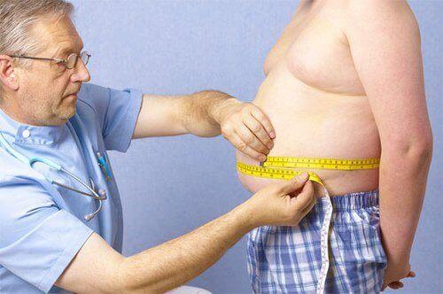 obesità e pancreas