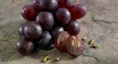 I benefici che si ottengono dai semi dell'uva