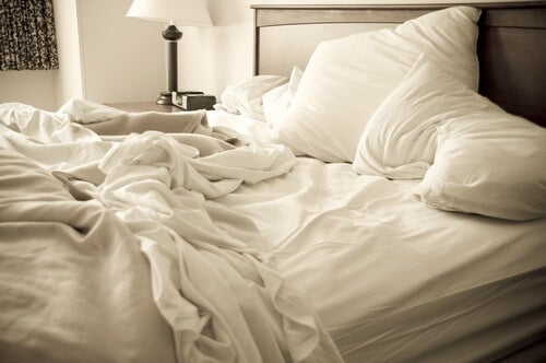 Eliminate le cimici da letto con questi rimedi vivere pi sani - Parassiti del letto ...