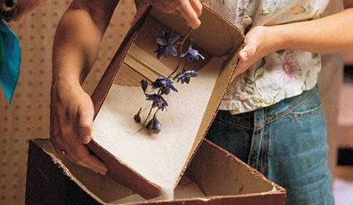 come essiccare i fiori con il gel di silice