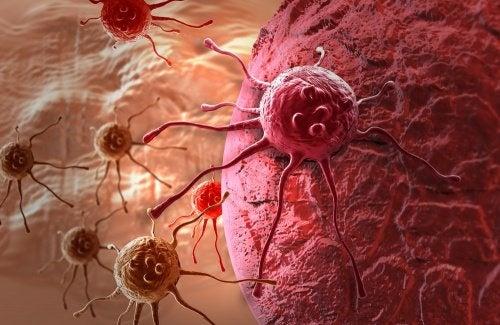 spinaci prevengono il cancro