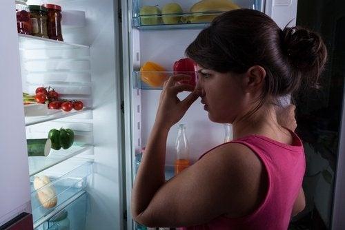 cattivo odore frigorifero