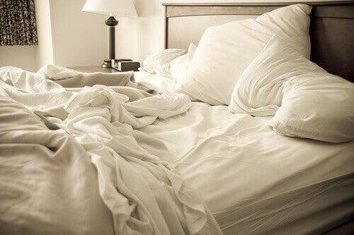 Prodotti Cimici Da Letto : Eliminate le cimici da letto con questi rimedi vivere più sani