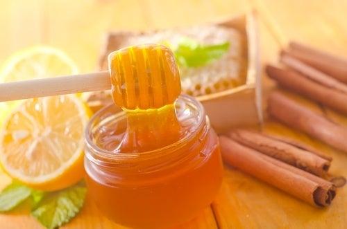 Miele con la cannella, ecco gli incredibili benefici