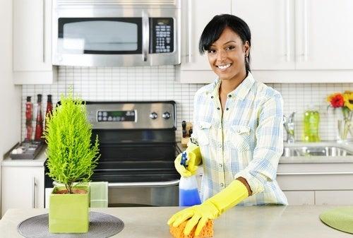 pulizie-in-cucina-500x337