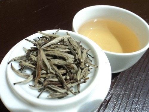 tè bianco la ritenzione idrica