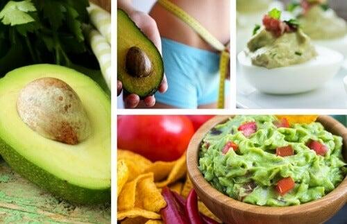 4 ricette a base di avocado per migliorare la salute