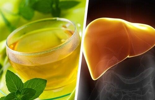 Curare il fegato con i cibi integrali e le verdure amare