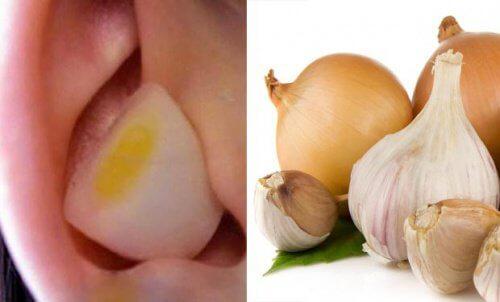 Aglio e cipolla nelle orecchie: perché può essere utile?