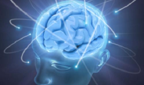 Attività cerebrale
