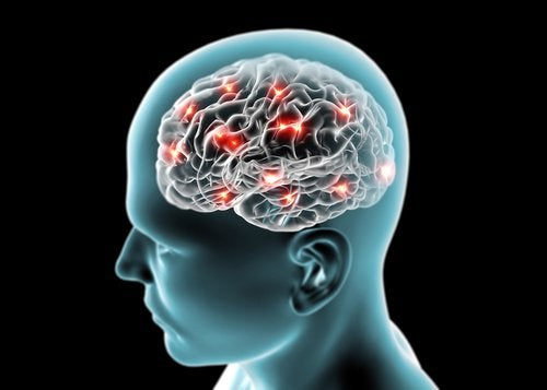 cervello e dormire meno di 8 ore
