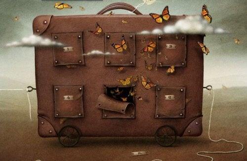 valigia-farfalle-500x327